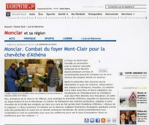 article nichoirs chevêche035